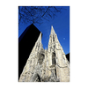 Manhattan - 5th Avenue - St Patrick's Cathedral
